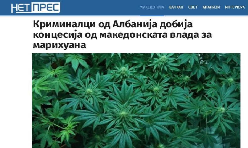Криминалци од Албанија добија концесија од македонската влада за марихуана