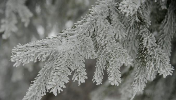 Снежни наноси, голомразица и силен ветер до 80 км/ч, ова е денешната прогноза за времето