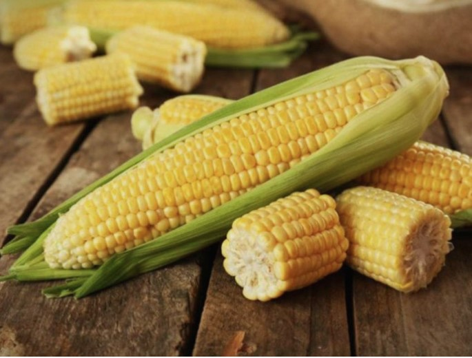 Пченката е богата со витамини