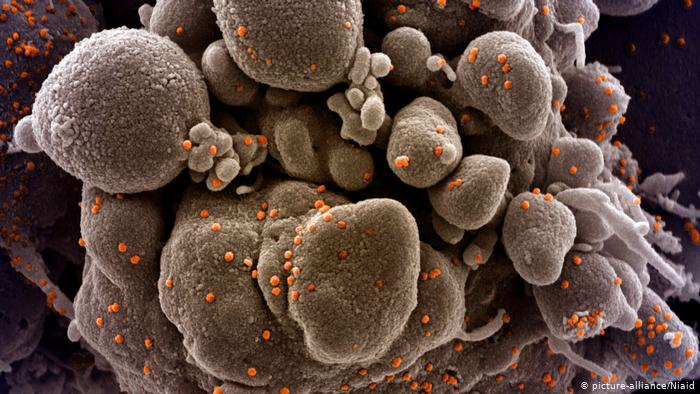 Мутација на коронавирусот од Уганда се појави во Грција, додека е зголемен бројот на случаи од британскиот сој