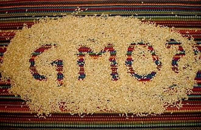 Сојата е ГМО, соините трошки, шницли, па и оризот од кочани. Суперанализата потврди!