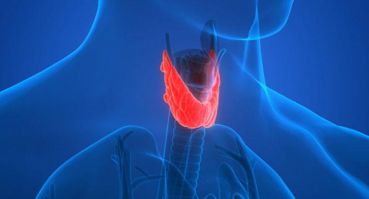 Симптоми дека работата на штитната жлезда е нарушена